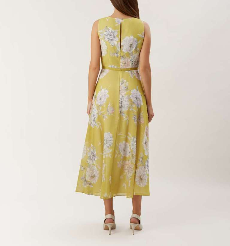 Hobbs Carly Floral Print Ribbon Midi Dress back view