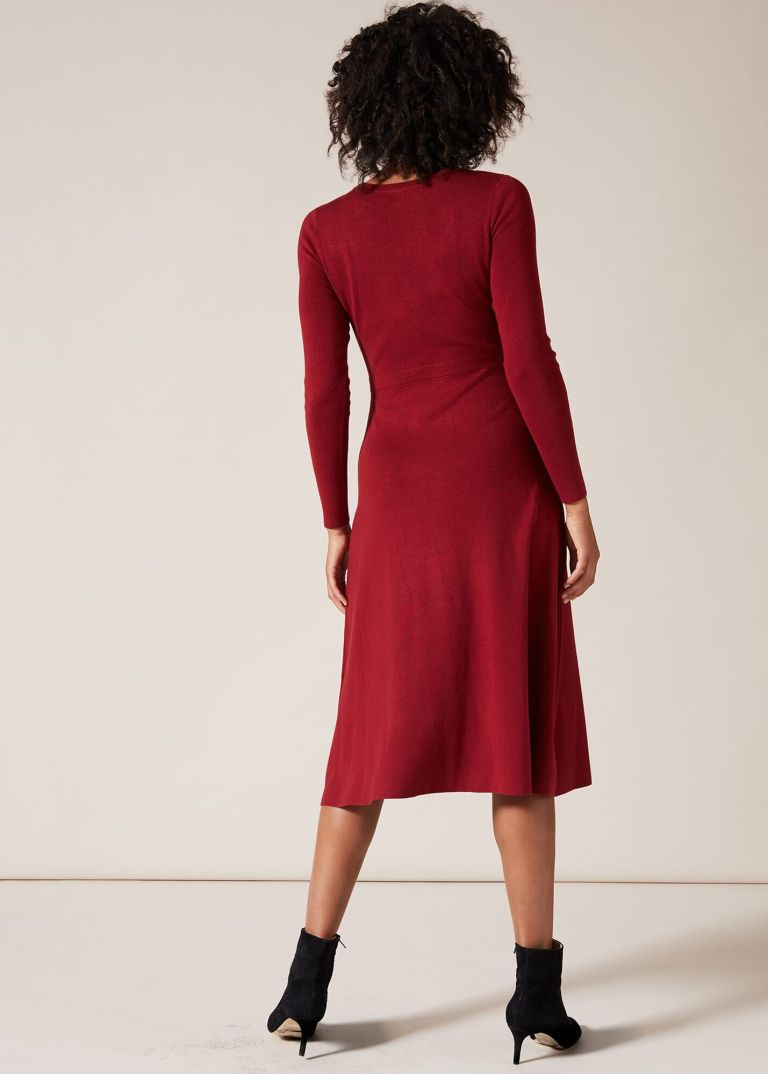Phase Eight Mel Fit and Flare Dress back view