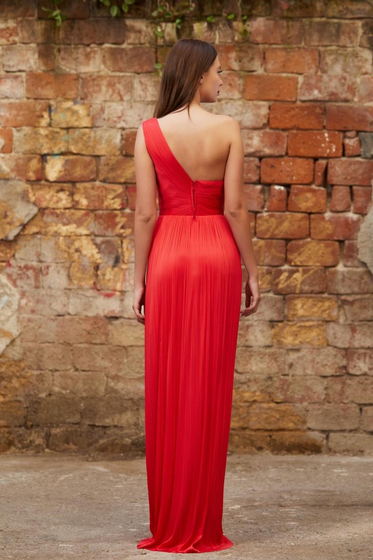 Iris Serban Ama gown back view