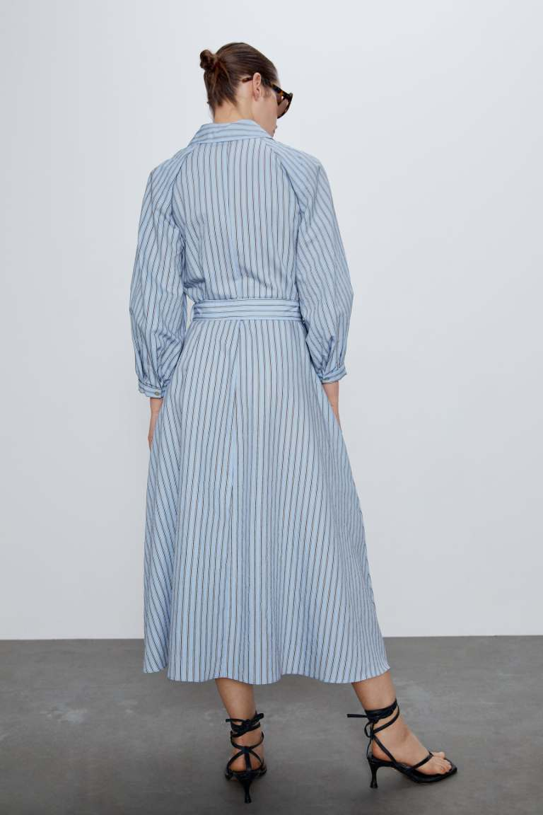 Zara Striped Shirt Dress back view