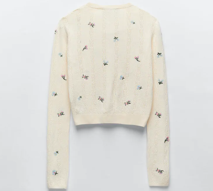 Zara Knit Cardigan With Embroidery back view