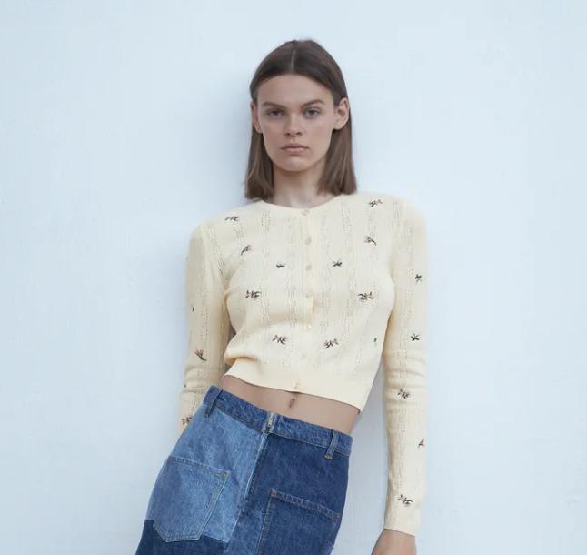 Zara Knit Cardigan With Embroidery