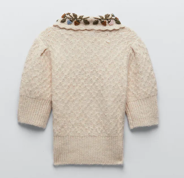 Zara Embroidered Knit Sweater back view
