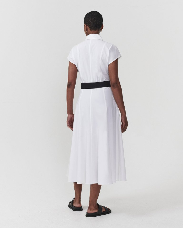 DAI Happiness Is a Shirt Dress back view